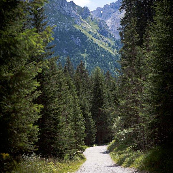 Vacanza in Trentino